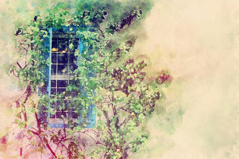 stile dell'acquerello ed immagine astratta della finestra blu e dell'albero verde nel parco illustrazione vettoriale