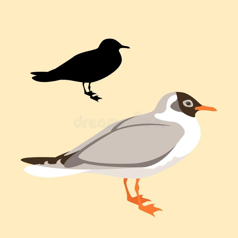 Stile della siluetta del nero di vettore del gabbiano dell'uccello piano illustrazione di stock