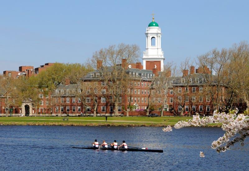 Stile di vita di Harvard fotografia stock