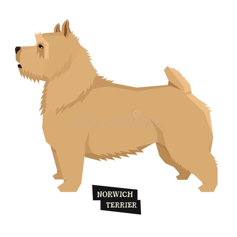 Stile geometrico di Norwich Terrier della raccolta del cane illustrazione di stock