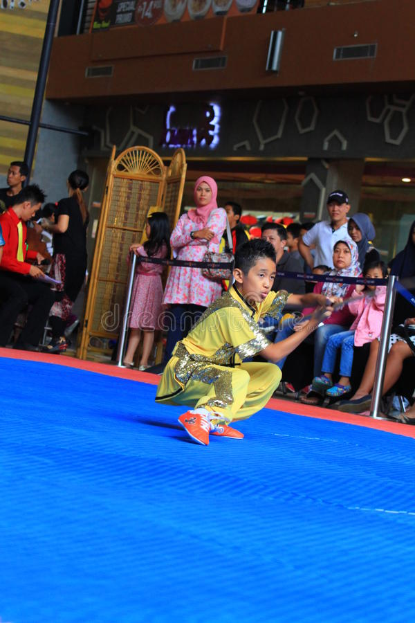 Stile Kung Fu - Wushu di Biyan Nangung fotografia stock libera da diritti
