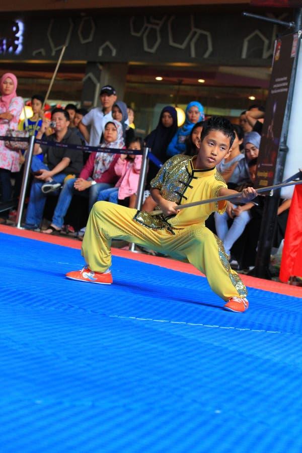 Stile Kung Fu - Wushu di Biyan Nangung immagine stock libera da diritti