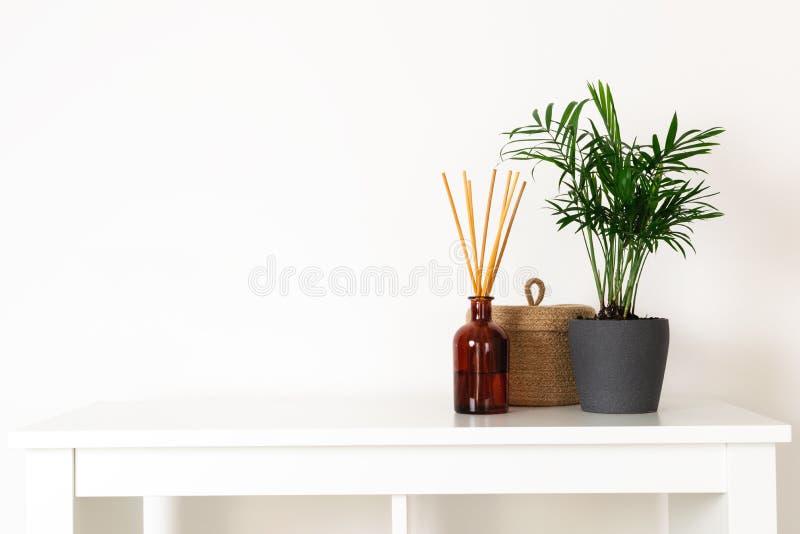 Stile nordico scandinavo del hygge, interno domestico - pianta sempreverde, diffusore dell'aroma del profumo, piccolo canestro de immagine stock