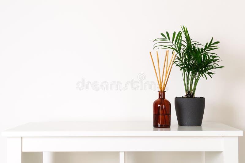 Stile nordico scandinavo del hygge, interno domestico - pianta sempreverde, diffusore dell'aroma del profumo, scaffale bianco immagini stock