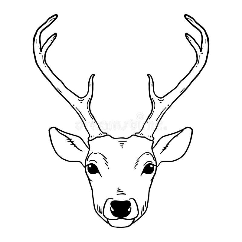 Stile tribale della testa disegnata a mano dei cervi illustrazione vettoriale