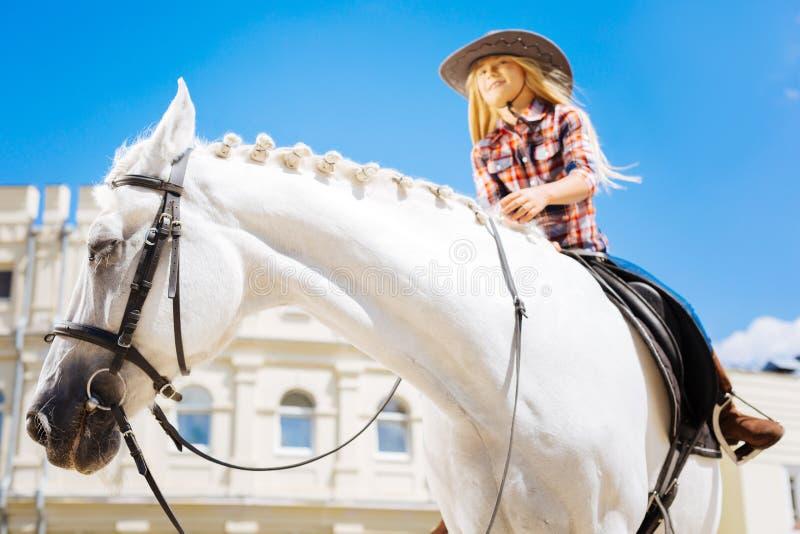 Stilfull cowboyflicka som bär den bruna hästen för ridning för ridningkängor fotografering för bildbyråer