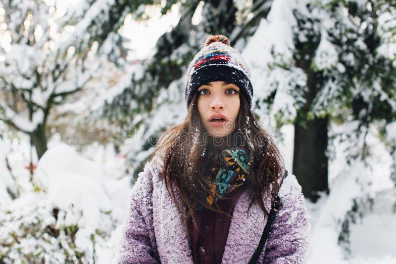 Stilfull innegrej för stående och härlig flicka i snöig väder arkivfoto