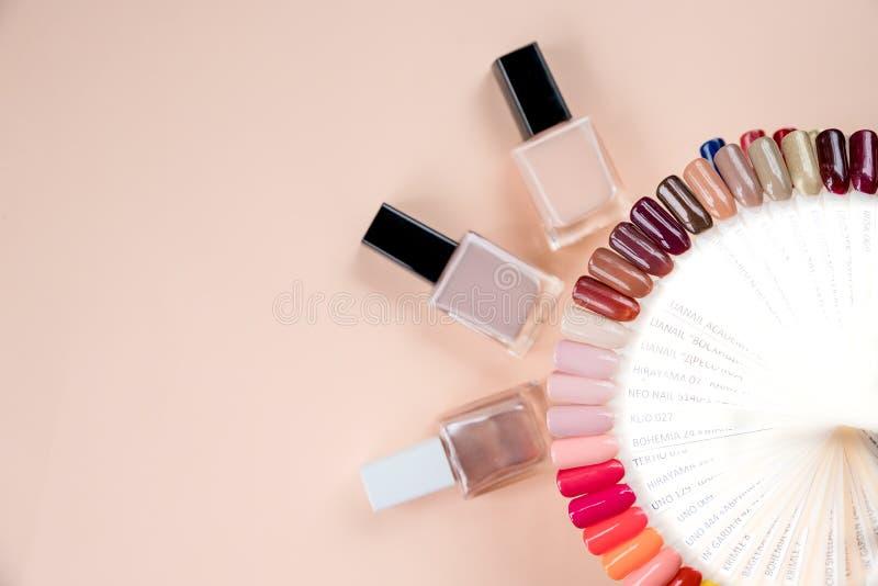 Stilfull moderiktig kvinnlig manikyr Spika isolerad bakgrund för polermedel på mjuk pastellfärgad bakgrund manicure färgrikt spik arkivbilder