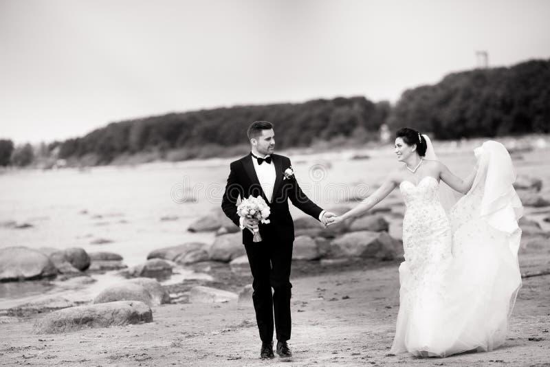 Stilfulla br?lloppar som st?r p? havskust Nygifta personer g?r vid havet svart white fotografering för bildbyråer