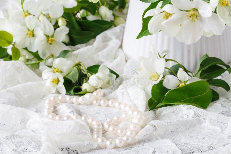 Stilfullt kvinnligt utrymme med vita blommor av äppleträdet i vas Utformad minimalistic stilleben arkivfoto