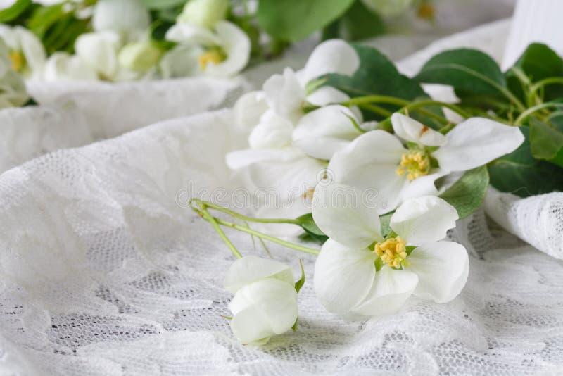 Stilfullt kvinnligt utrymme med vita blommor av äppleträdet i vas Utformad minimalistic stilleben royaltyfri fotografi