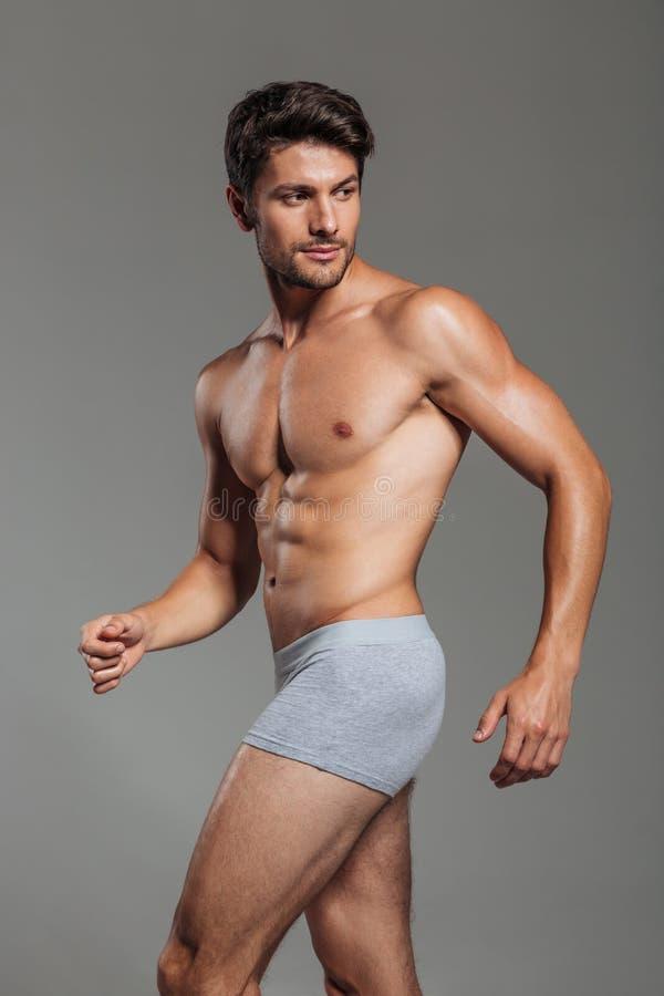 Stilig attraktiv man, i att posera för underkläder royaltyfria bilder
