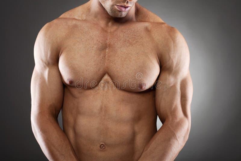 Stilig fit och muskulös man royaltyfri bild