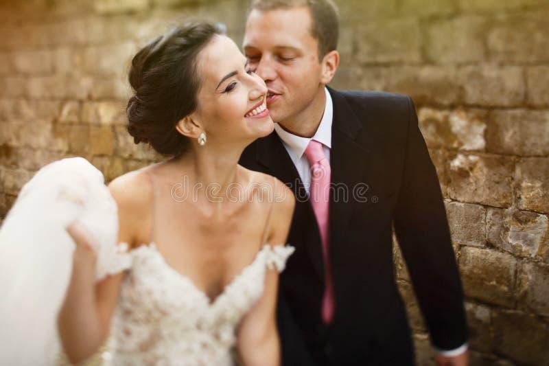 Stilig gullig brudgum som kysser le härlig brunettbrudcl fotografering för bildbyråer