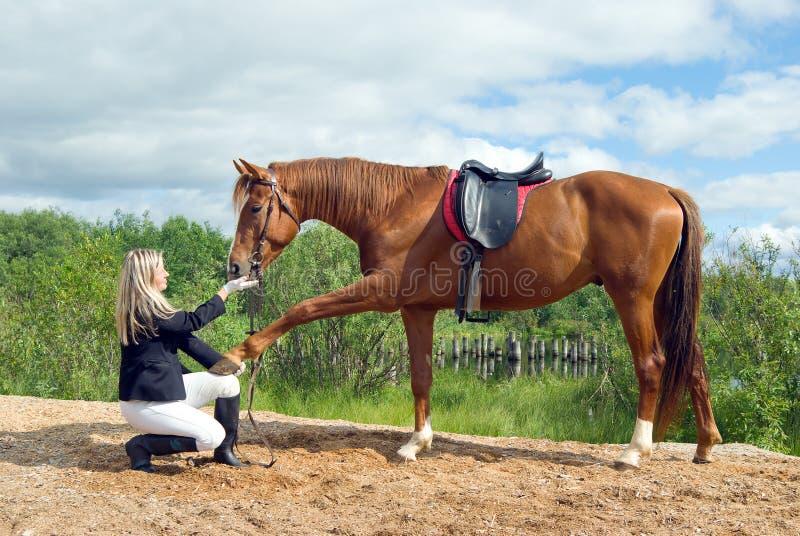 stilig härlig flicka henne häst royaltyfri foto