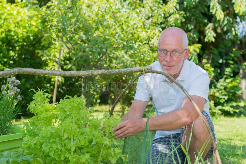 Stilig hög man i hans trädgård royaltyfri foto