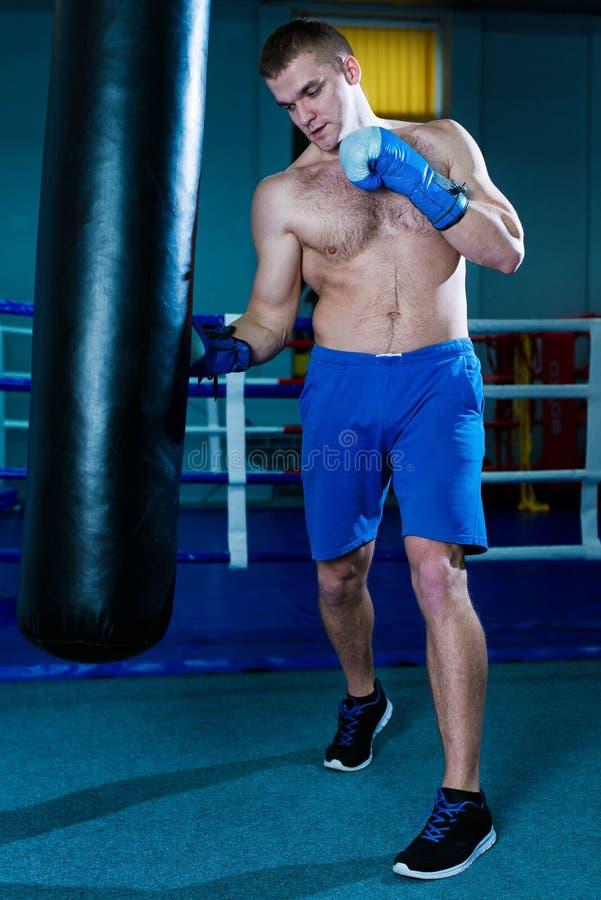 Stilig man i blåa boxninghandskar som utbildar på en stansa påse i idrottshallen Manlig boxare som gör genomkörare royaltyfria bilder