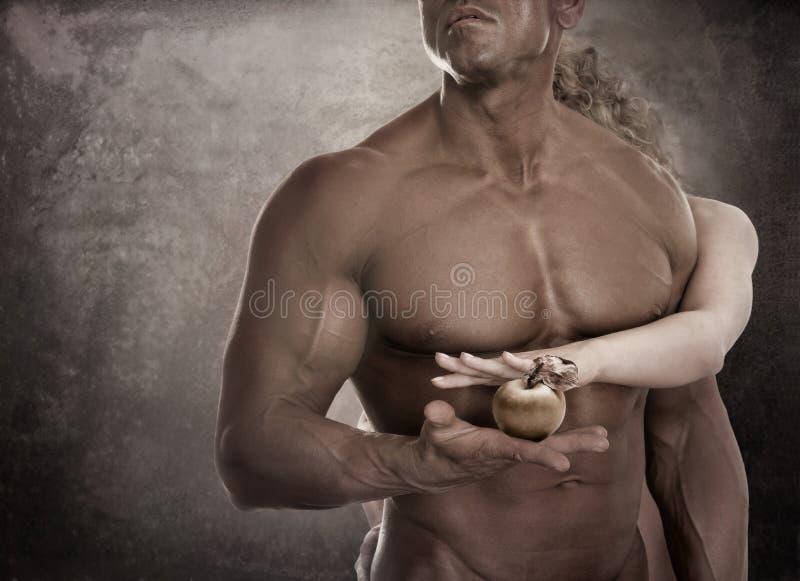 Stilig manlig kropp Hållande äpple för par i händer Begrepp Adam arkivbild