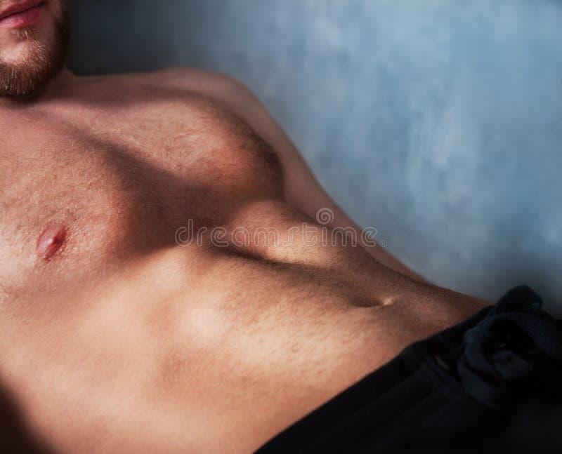 Stilig muskulös manlig modell royaltyfria bilder