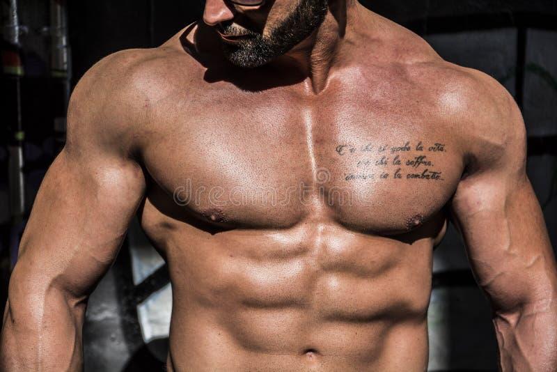 Stilig muskulös Shirtless snygg manman som är utomhus- i stadsinställning royaltyfri bild