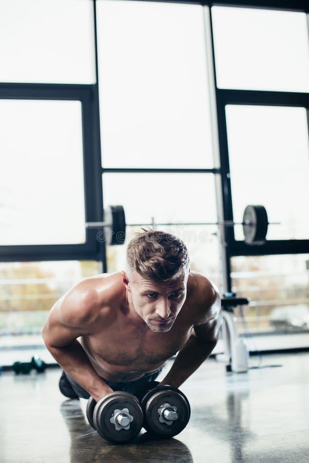 stilig shirtless idrottsman som gör plankan på hantlar royaltyfri foto