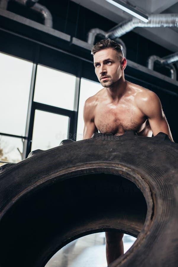 stilig shirtless idrottsman som lyfter det tunga gummihjulet royaltyfri fotografi