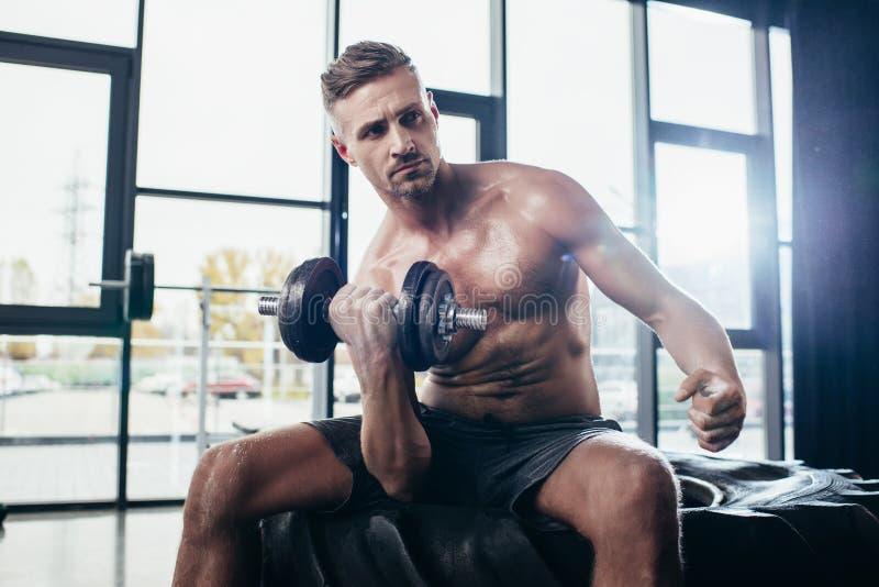 stilig shirtless idrottsman som sitter på gummihjulet och övar med royaltyfria bilder