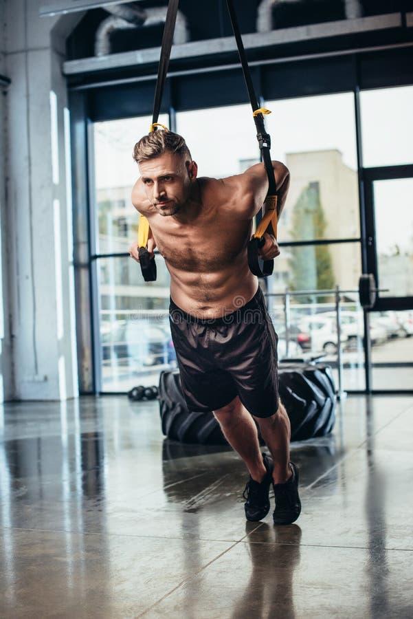 stilig shirtless svettig idrottsmanutbildning med upphängningremmar arkivfoto