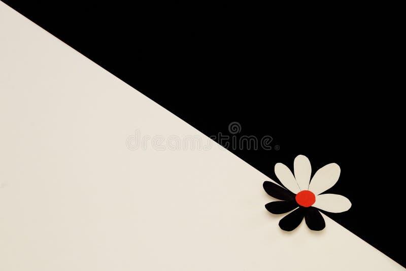 Stiliserad dekorativ blomma som göras av vitt, svart rött papper på gränsen av vit och svart bakgrund Minsta bakgrund till royaltyfri foto
