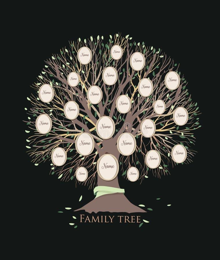 Stiliserat stamträd eller rasren diagrammall med filialer och runda fotoramar som isoleras på svart bakgrund vektor illustrationer