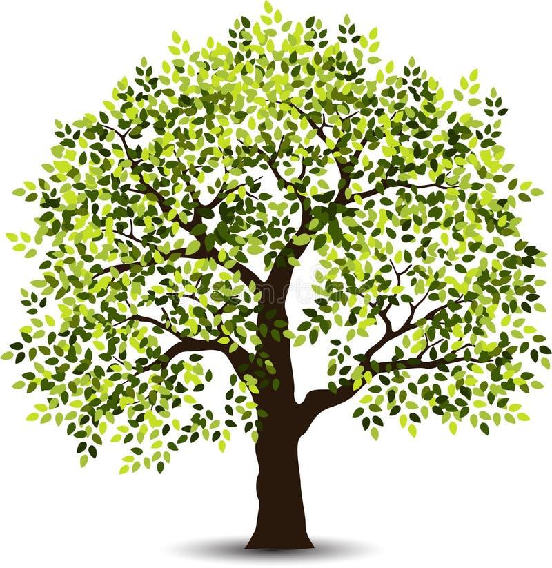 Stiliserat träd för dig design stock illustrationer