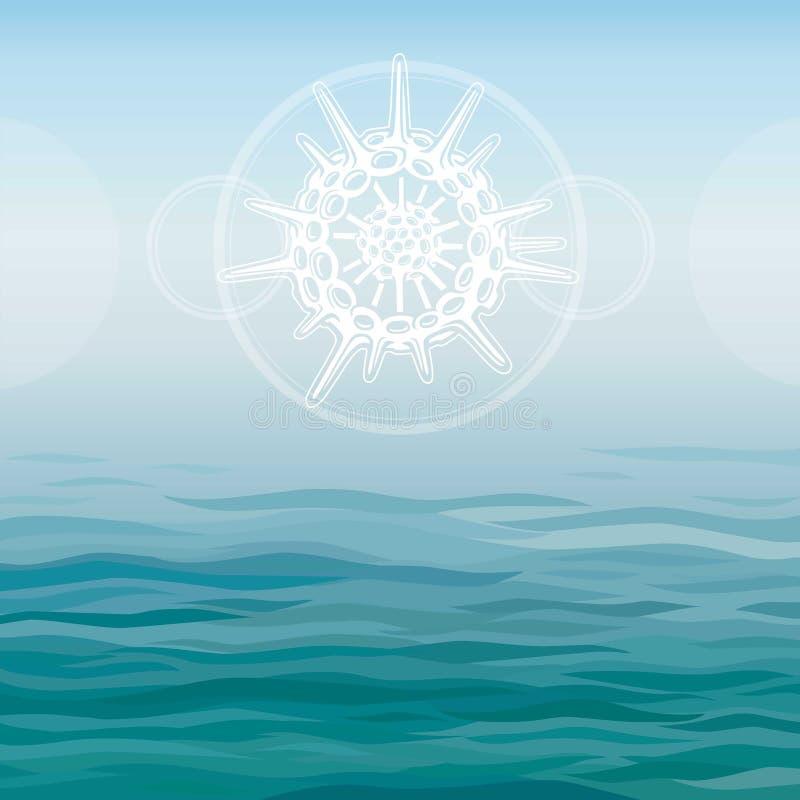 Stilisierte Zeichnung eines Radiolaria - der grundlegende Marineorganismus vektor abbildung