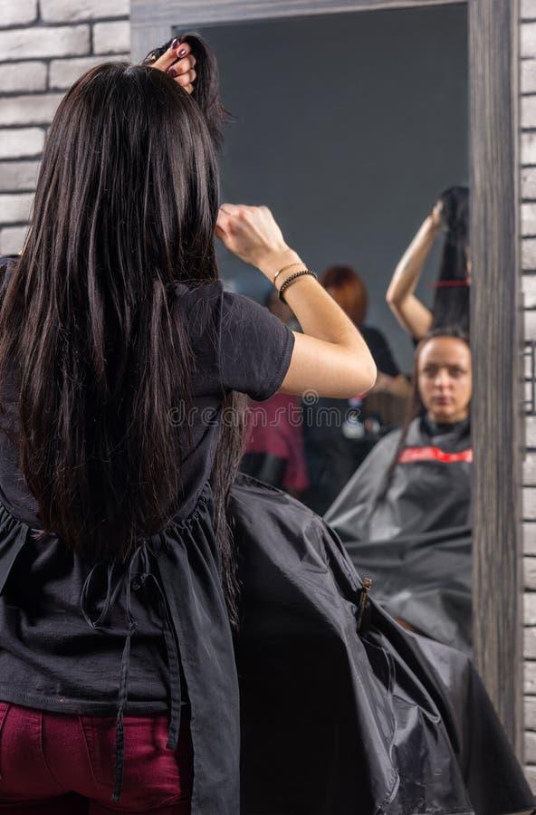 Stilista di capelli professionista femminile che pettina capelli bagnati di giovane brune immagine stock