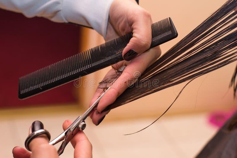 Stilista di capelli professionista sul lavoro immagini stock libere da diritti