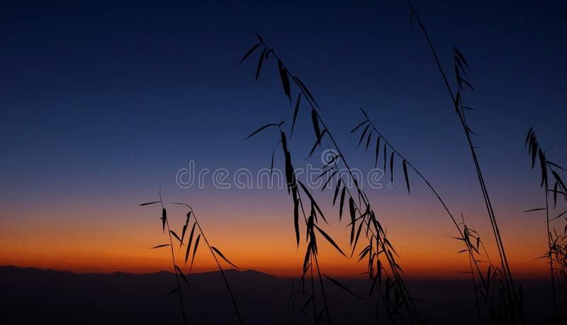 Still, beautiful morning royalty free stock images