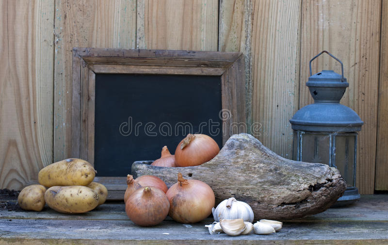 Download Still life stock image. Image of onion, life, food, white - 25036029