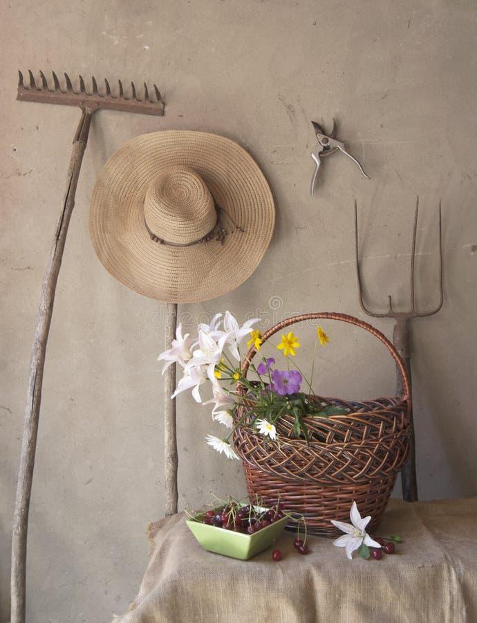 Download Still life stock photo. Image of fiber, retro, farm, employment - 25480484