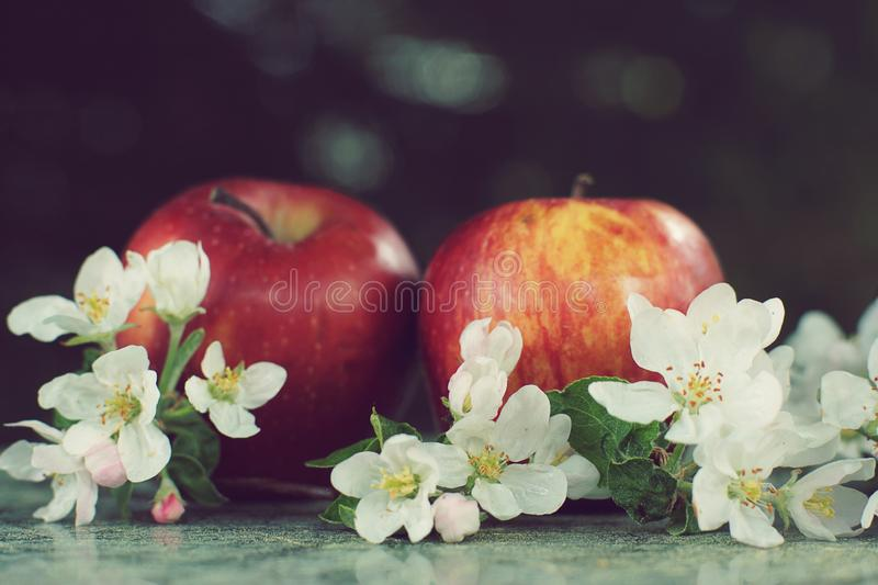 Still life with apples and delicate flowers on a table in spring royalty free stock photos