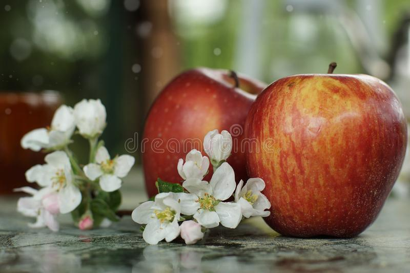 Still life with apples and delicate flowers on the table on a spring day stock photo