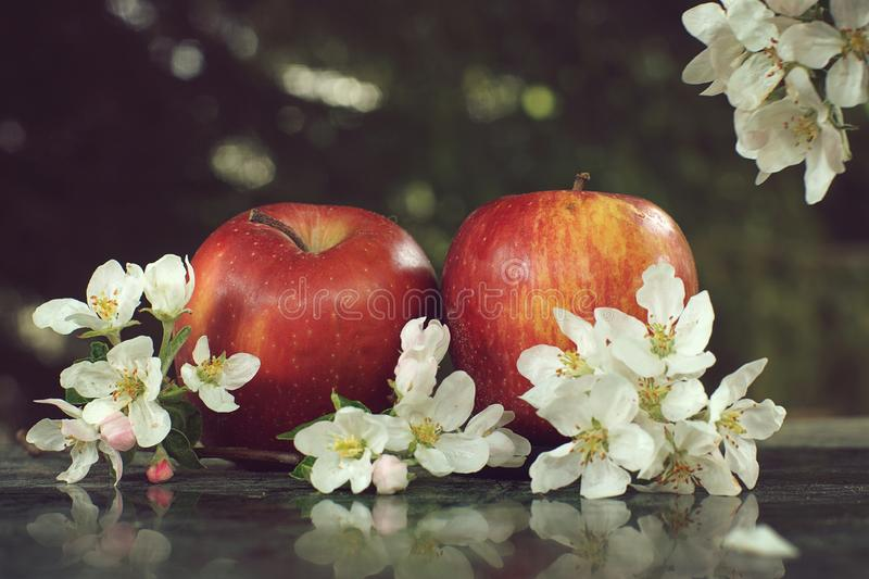 Still life with apples and delicate white flowers on a marble glossy table.  royalty free stock photography