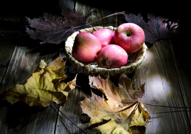 Still life with apples and leaves. Light brush stock photography