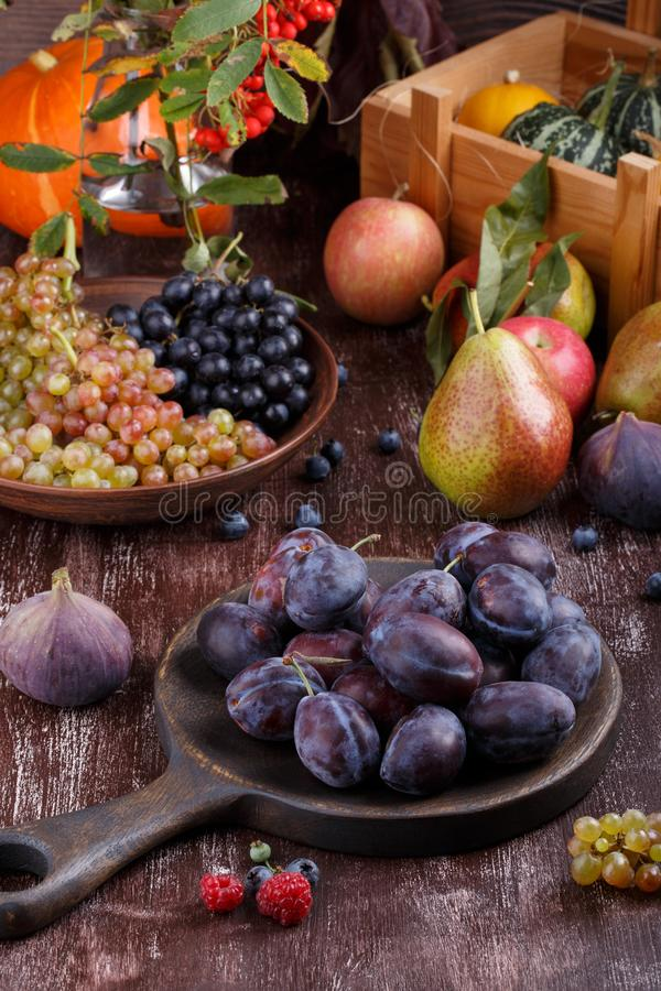 Still-life from autumn fruits on dark background. Grapes, melon, plums, pears, apples, figs, pumpkin royalty free stock images