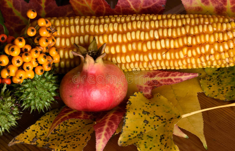 Still life of autumn royalty free stock images