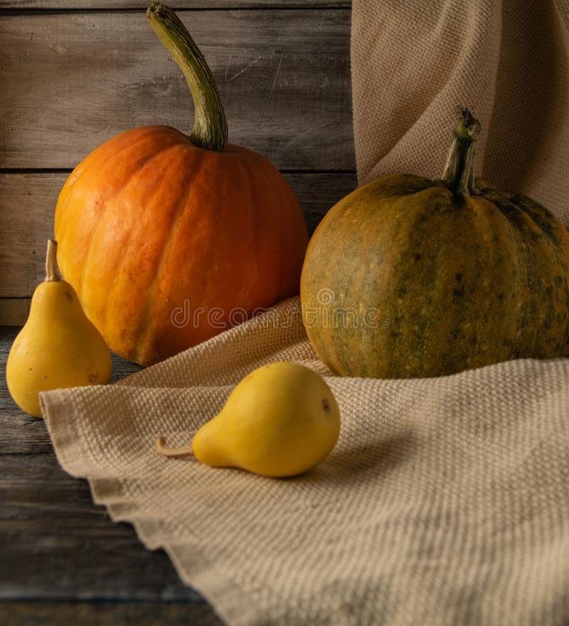 Still life of autumn pumpkins of various sizes. on a wooden background. stock photography