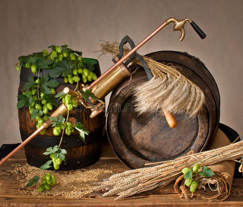 Still life with beer. Barley malt with hop cones and old barrel royalty free stock photo