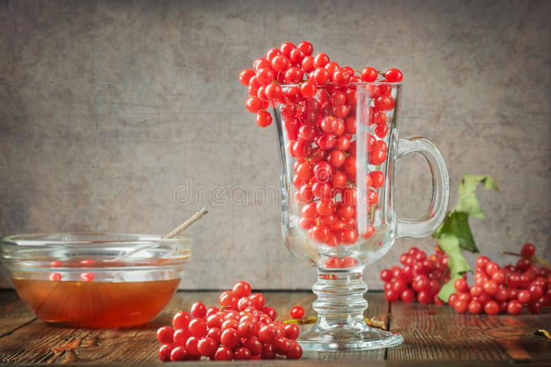 Still life berries of a viburnum in a glass and honey. On wooden table. Autumn concept food agriculture, harvesting, warming drinks, cooking royalty free stock images