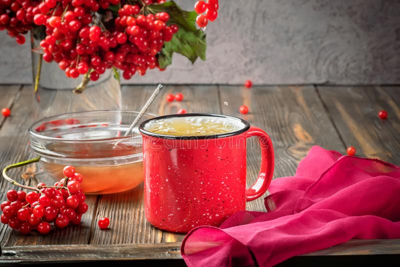 Still life berries of a viburnum in a glass and mug of hot tea a. Nd honey on a wooden table. Autumn concept food agriculture, harvesting, warming drinks stock image