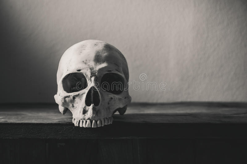Download still life black and white photography with human skull on wood stock image image