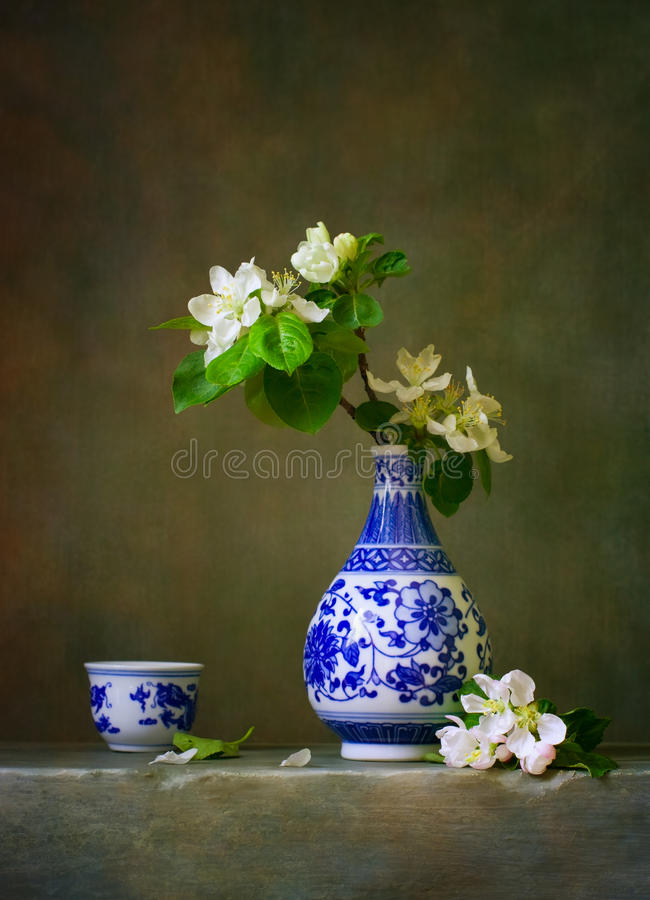 Still life with blooming apple stock images