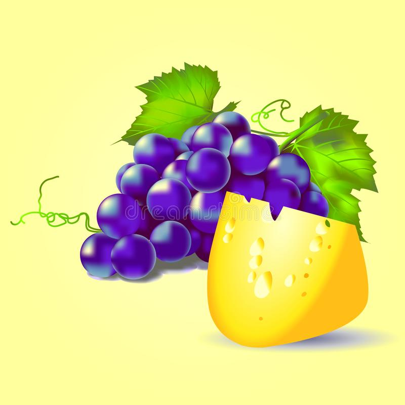 Still life blue grapes and cheese on a yellow background. Beautiful picture vector illustration
